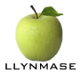 Llynmase Group
